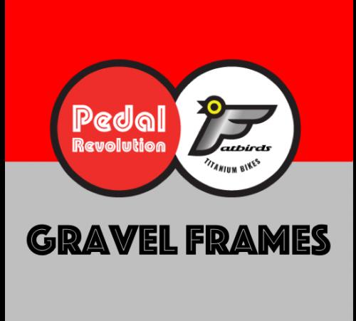 Titanium Gravel Frames
