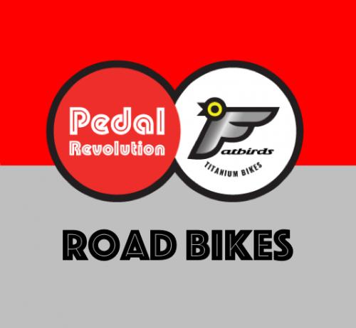 Titanium Road Bikes