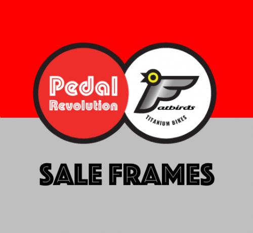 Titanium Sale Frames